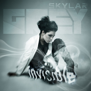 Invisible (Skylar Grey song) 2011 single by Skylar Grey