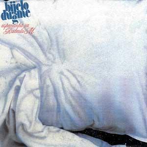 <i>Uspavanka za Radmilu M.</i> 1983 studio album by Bijelo Dugme
