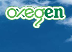 Oxegen music festival at Punchestown Racecourse, Ireland