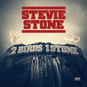 <i>2 Birds 1 Stone</i> 2013 studio album by Stevie Stone