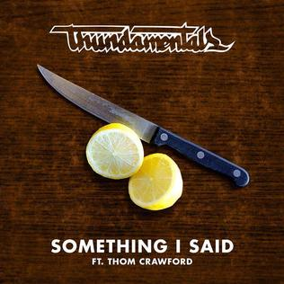 Something I Said 2014 single by Thundamentals (featuring Thom Crawford)