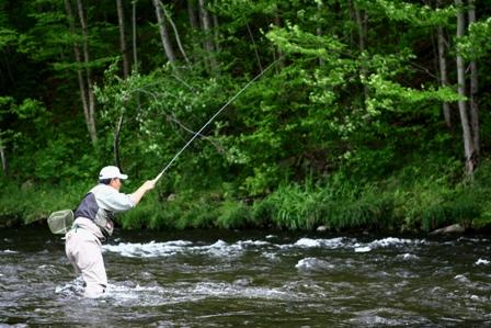 File ny 0509 tenkara wikipedia for Free fishing license ny
