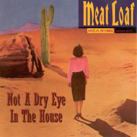 Not a Dry Eye in the House single by Meat Loaf