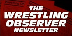 Image result for wrestling observer