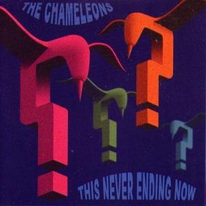 <i>This Never Ending Now</i> 2002 studio album by The Chameleons
