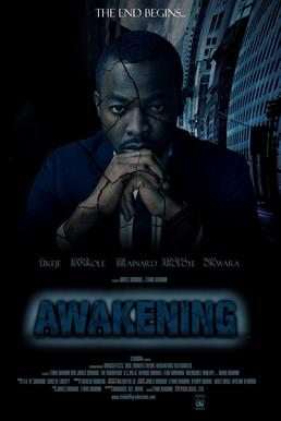 Awakening 2012 film.jpg