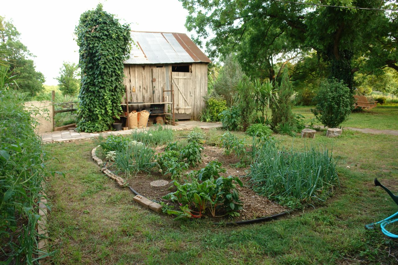 A Small Vegetable Garden In May Outside Of Austin, Texas