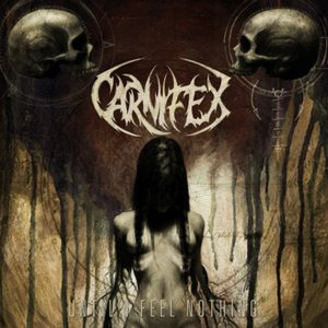<i>Until I Feel Nothing</i> 2011 studio album by Carnifex