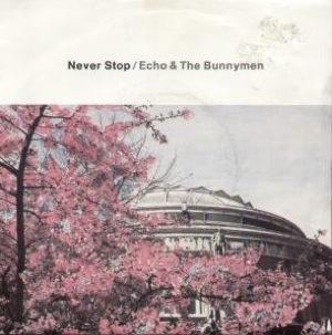 Cubra la imagen de la canción Never Stop por Echo & the Bunnymen