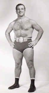 Iron Mike DiBiase American professional wrestler