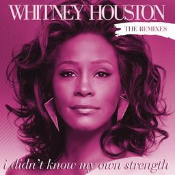 I Didnt Know My Own Strength (Whitney Houston song) 2009 promotional single by Whitney Houston