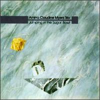 <i>Jumping in the Sugar Bowl</i> 1984 studio album by Amina Claudine Myers