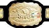 A picture of front plate on a championship belt