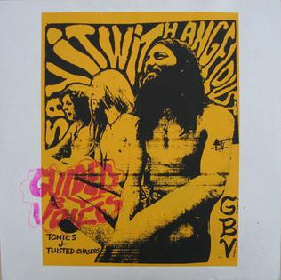 <i>Tonics & Twisted Chasers</i> album by Guided by Voices