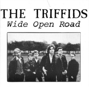 single by The Triffids