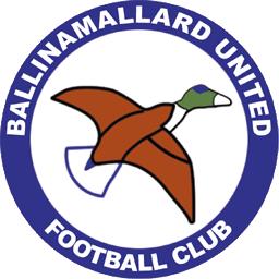 Ballinamallard United F.C. Association football club in Northern Ireland
