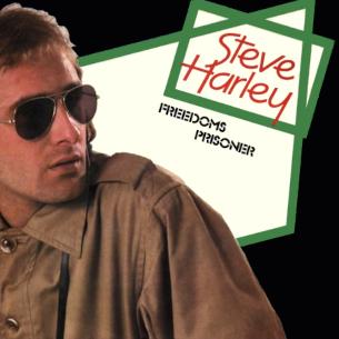 Freedoms Prisoner 1979 single by Steve Harley
