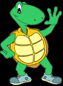 Turtle F2F