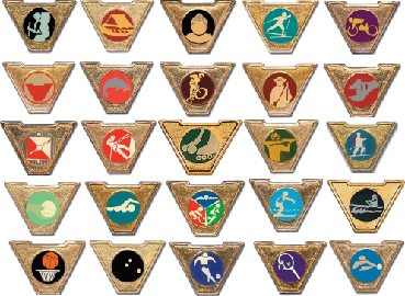 File:Varsity Scout Activity Pins.png - Wikipedia