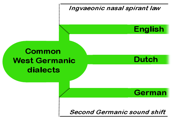 history of germanic languages The first part of grimm's law says that in the germanic languages, the p of proto-indo-european—the hypothetical ancestor of sanskrit, latin, greek, and many other european and indian .
