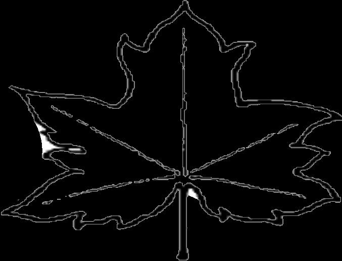 file leaf outline png wikipedia