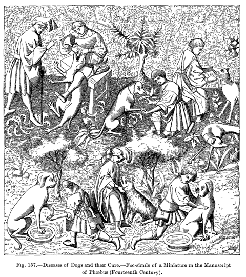 File Medieval Hounds2 Png Wikipedia