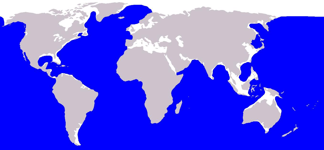 Distribución ballena azul