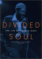 <i>Divided Soul</i> book by David Ritz
