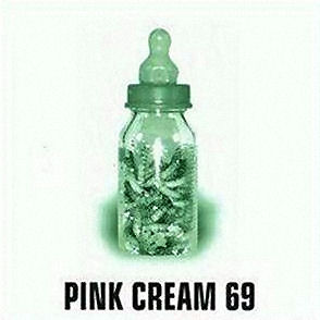 <i>Food for Thought</i> (Pink Cream 69 album) album by Pink Cream 69
