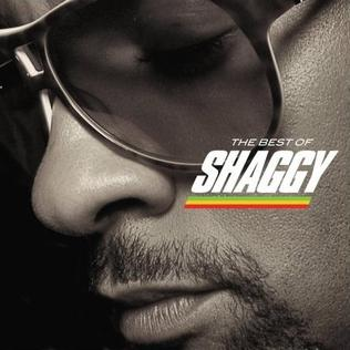The Best Of Shaggy Wikipedia