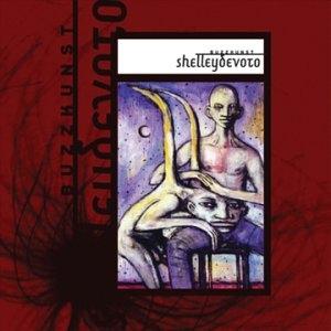 <i>Buzzkunst</i> 2002 studio album by ShelleyDevoto