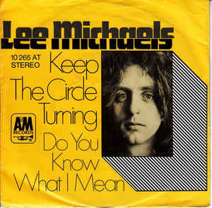 Do You Know What I Mean 1971 single by Lee Michaels