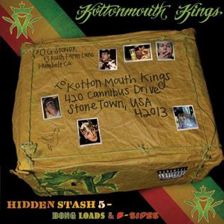 <i>Hidden Stash V: Bongloads & B-Sides</i> 2011 compilation album by Kottonmouth Kings
