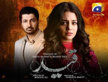 Qaid (TV series) - Wikipedia