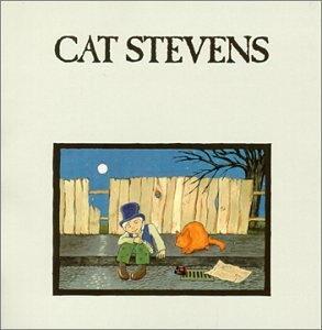 <i>Teaser and the Firecat</i> 1971 studio album by Cat Stevens