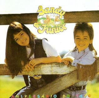 <i>Aniversário do Tatu</i> 1991 studio album by Sandy & Junior