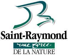 Résultats de recherche d'images pour «saint raymond ville»
