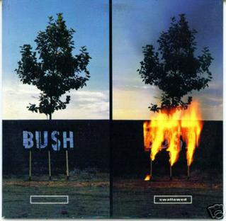 File:Bush - Swallowed.jpg