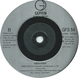 Marigold (Dave Grohl song) single by Nirvana