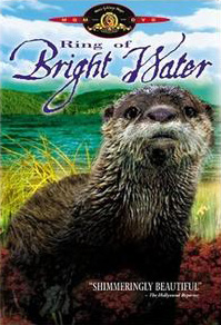 Ring of Bright Water (film) - Wikipedia