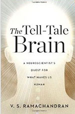 The Tell Tale Brain cover.jpg