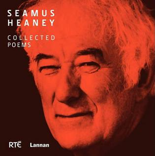 peter sirr essay Guide to answering unseen poetry, leaving cert  guide to answering unseen poetry, leaving cert english  of the essay will tell what is to be spoken.