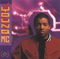 <i>Brainstorm</i> (album) 1991 studio album by Young MC