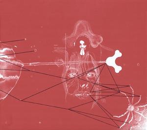 <i>Surrounded</i> (Björk album) 2006 box set by Björk