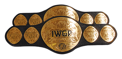 Image result for IWGP tag Team Championships