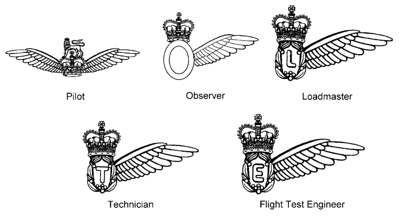 Aircrew brevet - Wikipedia
