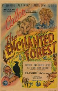 Poster of the movie The Enchanted Forest.jpg