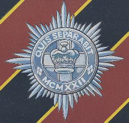 4th/7th Royal Dragoon Guards