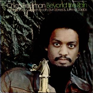 <i>Beyond the Rain</i> 1978 studio album by Chico Freeman
