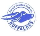 Darwin buffaloes football club